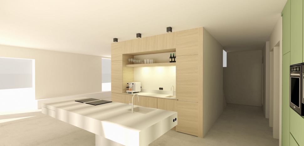 Woning - Particulier 3D tekening Keuken